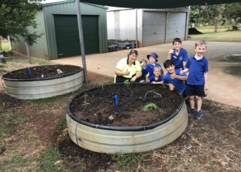 Walkamin State School reaps the fruits of Costa labour