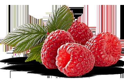 Costa-Group-Driscolls_Raspberry